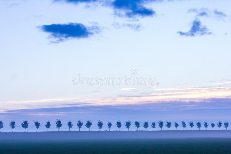 Erstaunliche niederländische Landschaft vor Sonnenaufgang lizenzfreie stockfotos