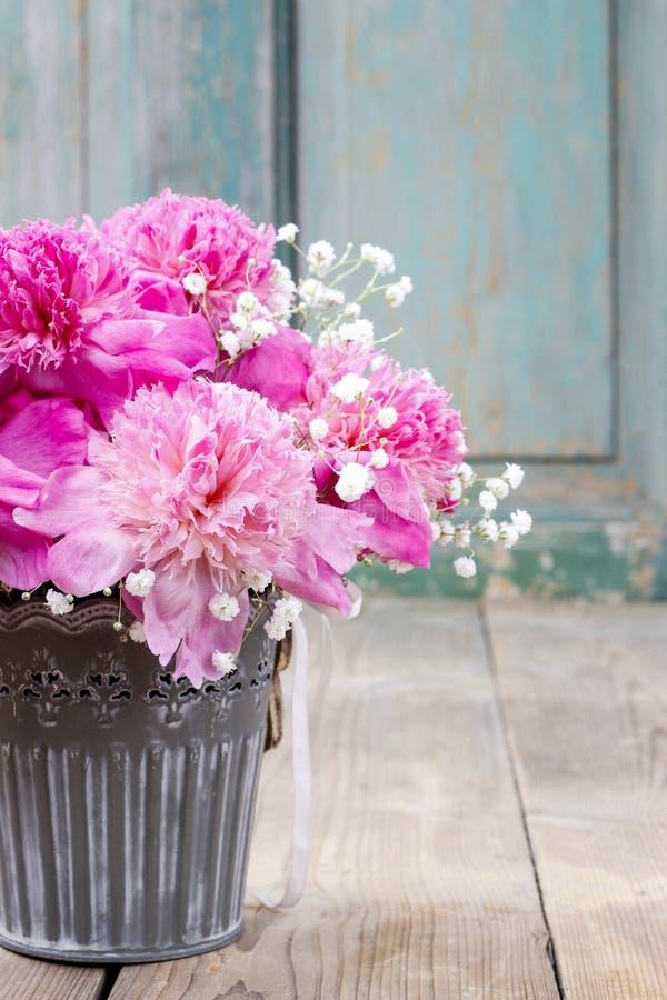Erstaunliche rosa Pfingstrosen im silbernen Eimer lizenzfreie stockfotografie
