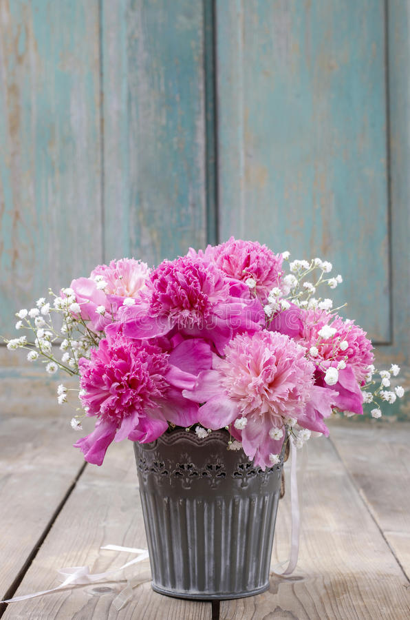 Erstaunliche rosa Pfingstrosen im silbernen Eimer lizenzfreies stockfoto