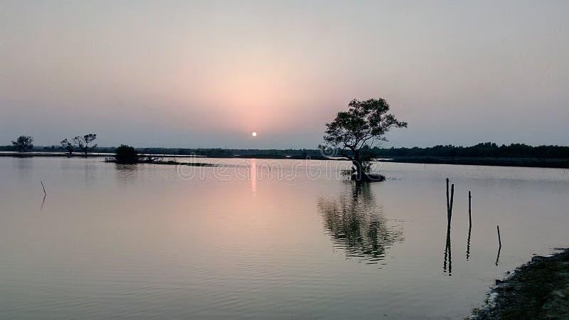 Erstaunliche Sonnenuntergangschönheit von der Bank eines Stromes nahe dem Fluss stockbild