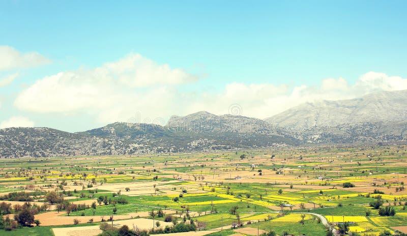 Erstaunliche sonnige Landschaft des Tales mit Feldern stockbilder