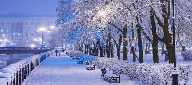 Erstaunliche Winternachtlandschaft des Schnees bedeckte Bank unter schneebedeckten B?umen und gl?nzenden Lichtern w?hrend der Sch lizenzfreie stockfotografie