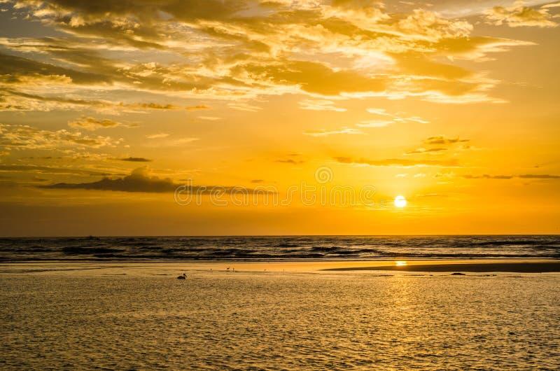 Erstaunlicher goldener Sonnenuntergang mit drastischen Wolken, Schattenbildern von Vögeln einschließlich einen Pelikan und ruhige stockfotos