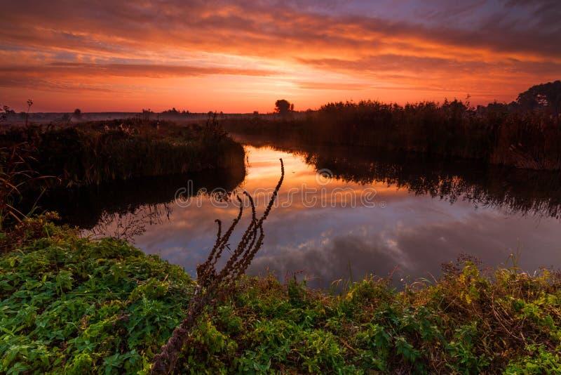 Erstaunlicher purpurroter Sonnenaufgang über Fluss stockfoto