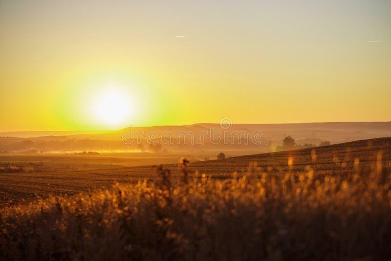 Erstaunlicher Sonnenaufgang auf camino stockbild