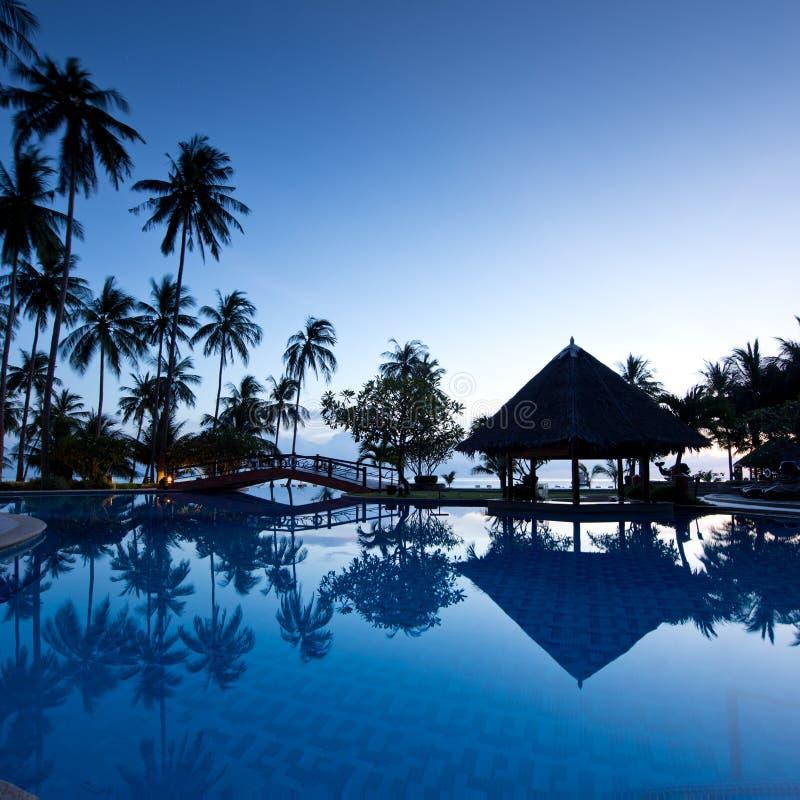 Erstaunlicher Sonnenaufgang am Swimmingpool mit Palmen lizenzfreie stockfotografie