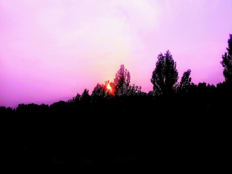 Download Erstaunlicher Sonnenuntergang Im Wald Stockfoto - Bild von verstecken, sonne: 96929310