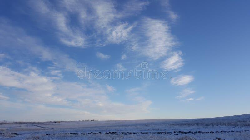 Erstaunlicher tiefer blauer Himmel mit Feder-förmigen Wolken der Federwolke über Trockenrasen - Naturhintergrund Cirrus-Wolken üb lizenzfreies stockbild