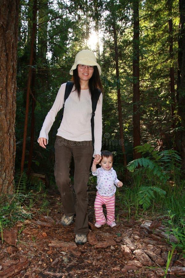 Erste Jobstepps des Babys im Wald stockfotos