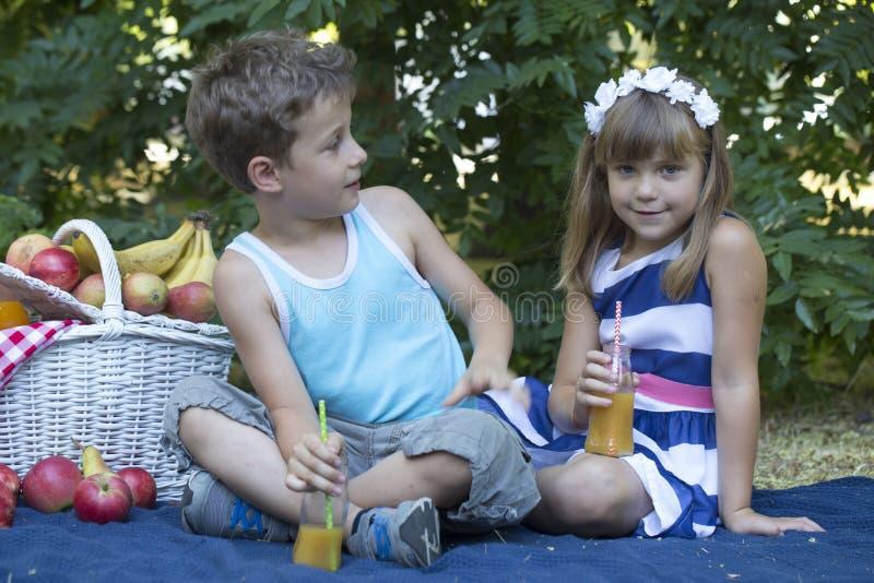 Erste Liebe und Picknick stockbilder