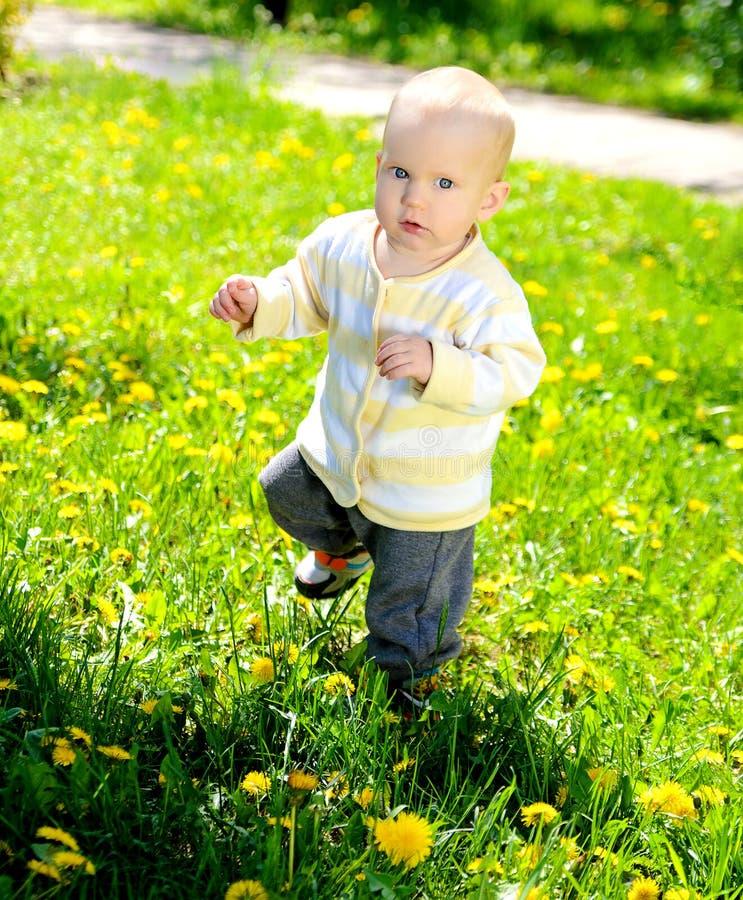 Erste Schritte des blonden Kleinkindbabys auf Frühlingsgras lizenzfreies stockbild