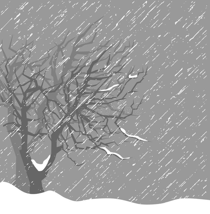 Erster Schnee lizenzfreie abbildung