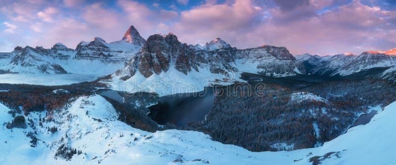 Erster Schnee Berg Assiniboine, alias Assiniboine-Berg, ist ein Pyramidenhöchstberg, der auf der großen Verteilung gelegen ist lizenzfreie stockfotos