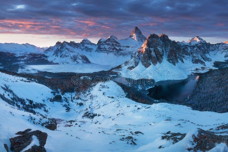 Erster Schnee Berg Assiniboine, alias Assiniboine-Berg, ist ein Pyramidenhöchstberg, der auf der großen Verteilung gelegen ist stockfotos