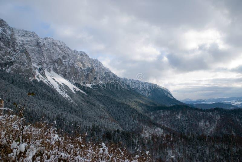 Erster Schnee im Winter lizenzfreie stockfotos