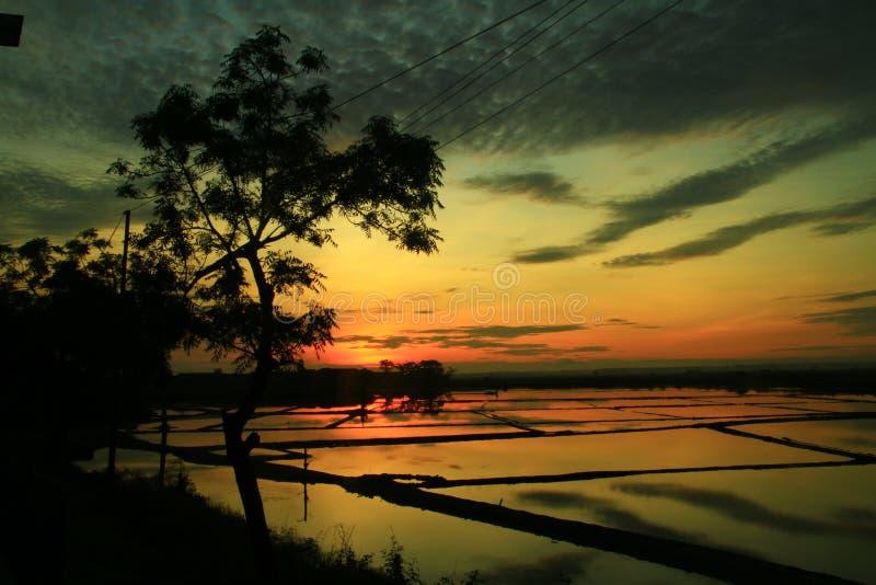 Erster Sonnenaufgang im Chinesischen Neujahrsfest bei Kaliori lizenzfreie stockfotos