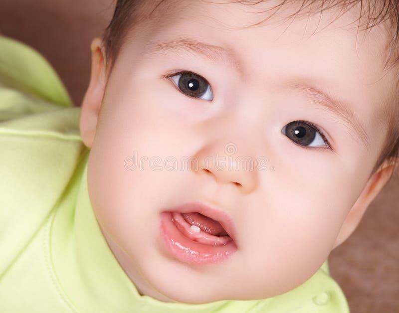 Erster Zahn lizenzfreies stockbild