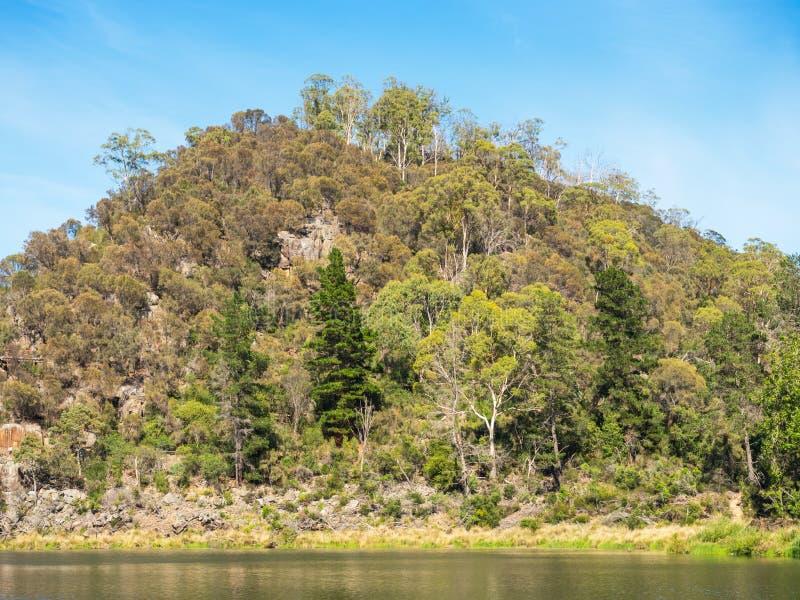 Erstes Becken in der Katarakt-Schlucht, Tasmanien lizenzfreie stockfotografie