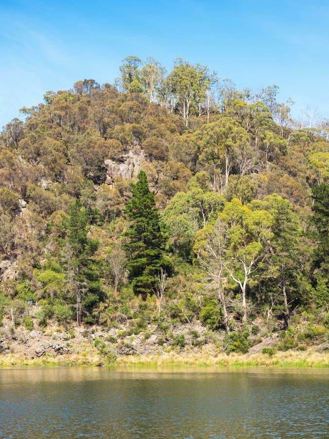 Erstes Becken in der Katarakt-Schlucht, Tasmanien stockfoto