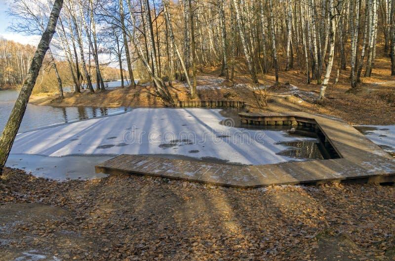 Download Erstes Eis Auf Einem Teich Im Forest Park Stockbild - Bild von oktober, fußgänger: 47100203