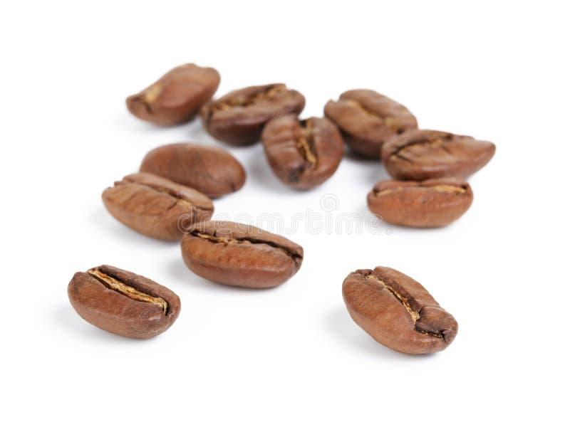 Erstklassige Kaffeebohnen lokalisiert auf weißem Hintergrund stockfotografie
