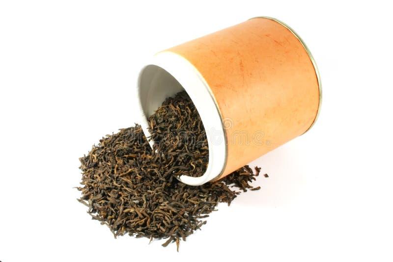 Erstklassiger getrockneter chinesischer Tee stockbilder