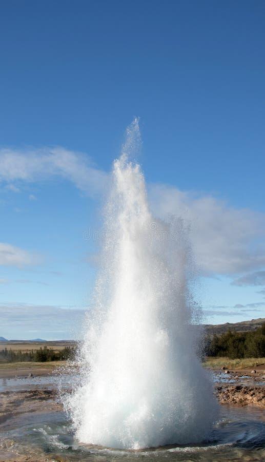 Erup??o do geyser de Strokkur Erup??o da ?gua quente C?rculo do ouro isl?ndia fotos de stock royalty free