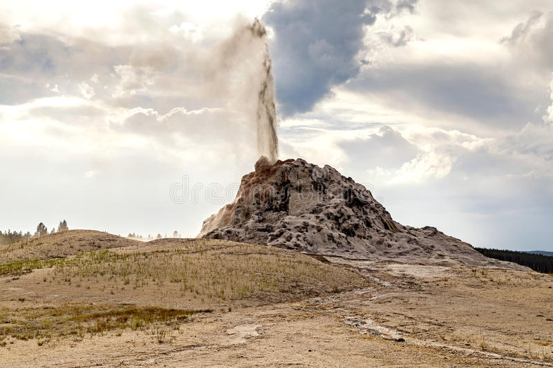 Erupting White dome geyser in Yellowstone National Park, Wyoming, USA. Silica and water can be seen in the air stock photo