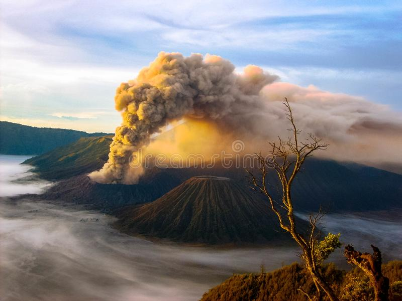 Eruption Bromo stockbilder
