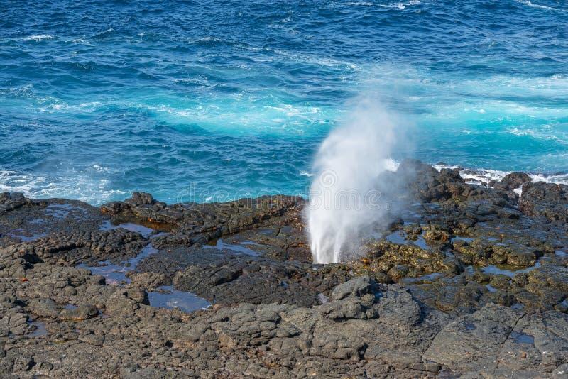 Eruzione della soffiatura dall'oceano Pacifico, Galapagos, Ecuador fotografie stock libere da diritti