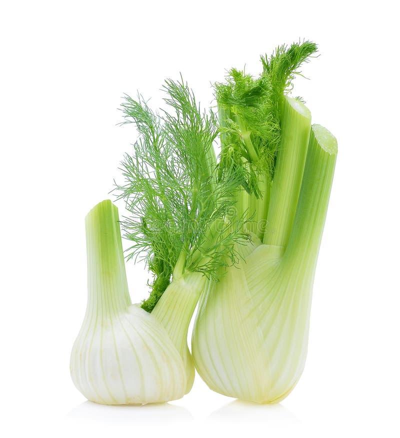 Erva-doce fresca, orgânica fotos de stock