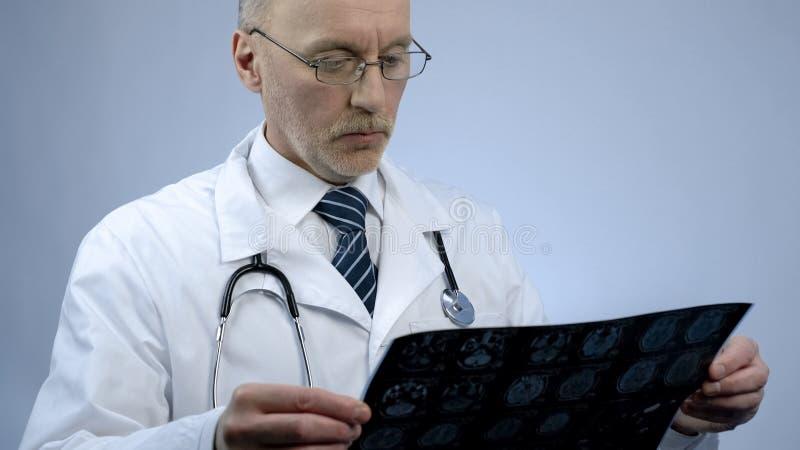 Ervaren mannelijke therapeut die het aftasten van patiëntenhersenen, bekijken die MRI-resultaten controleren stock afbeelding