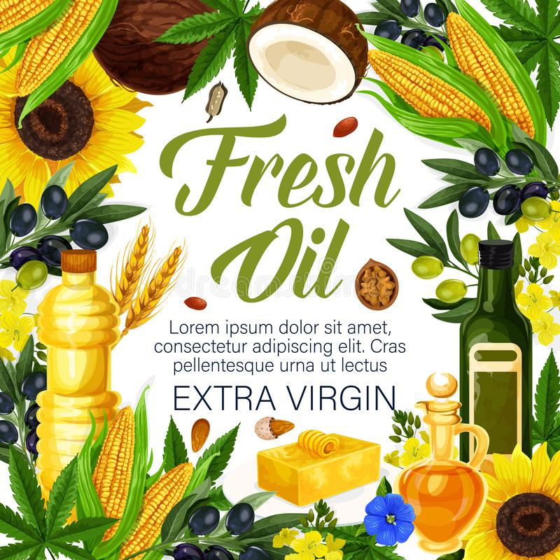 Ervas, óleos virgens extra de plantas orgânicas, cartaz ilustração stock