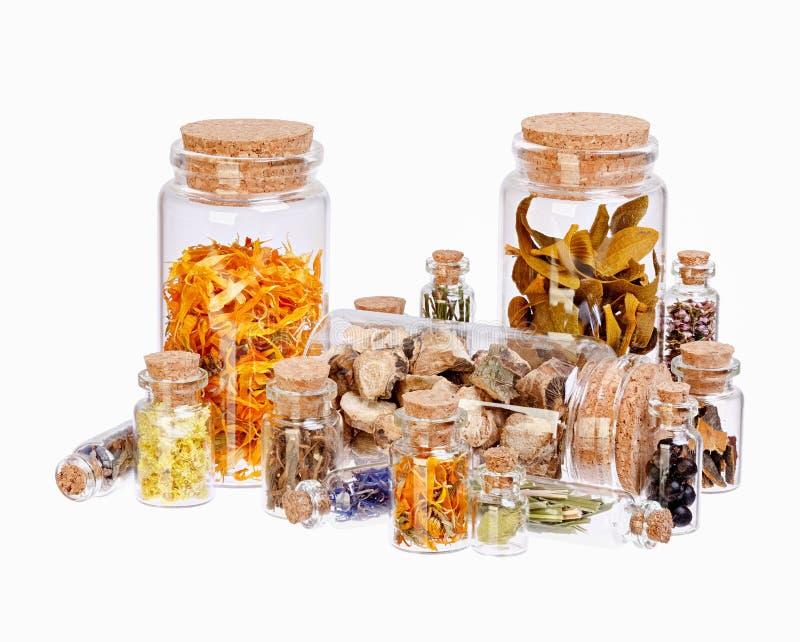 Ervas curas diferentes nas garrafas de vidro para o fitoterapia isolado no branco fotos de stock