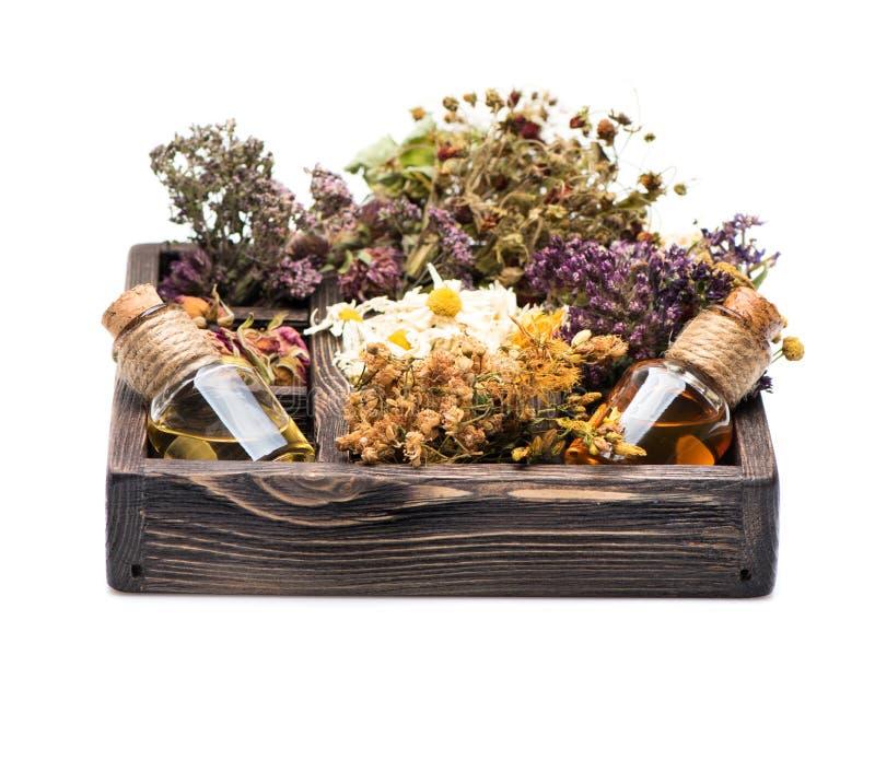 Ervas curas e tinturas em uma caixa de madeira Termas foto de stock royalty free