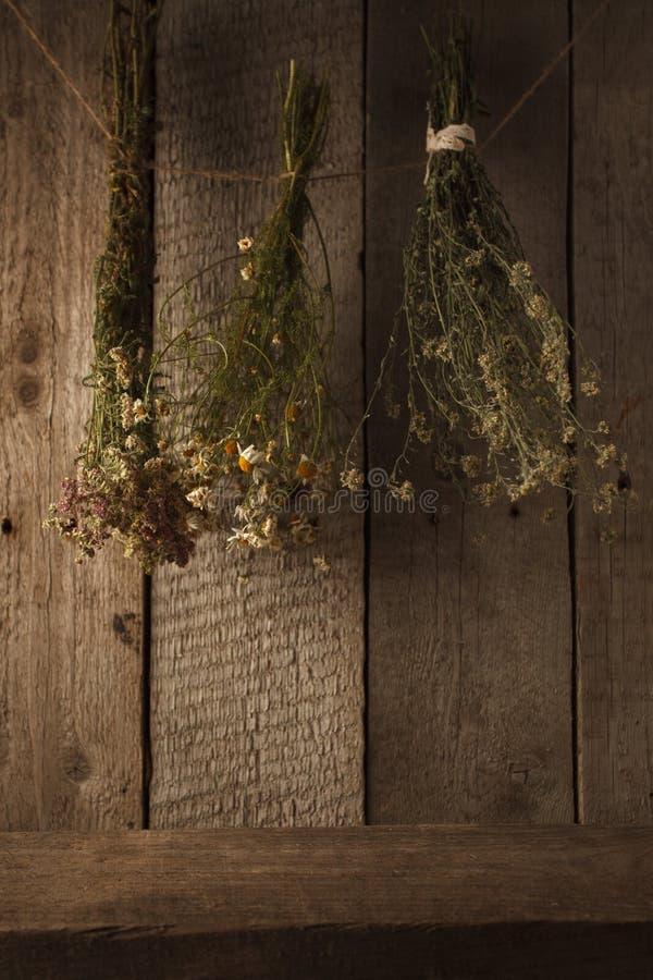 Ervas curas na parede de madeira, plantas secadas, fitoterapia, estilo rústico fotos de stock royalty free