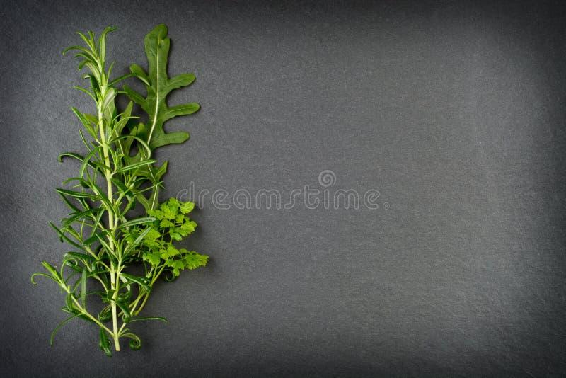 Ervas dos alecrins, do foguete e do cerefólio na ardósia imagem de stock