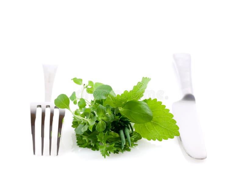 Ervas e cutelaria saudáveis foto de stock royalty free