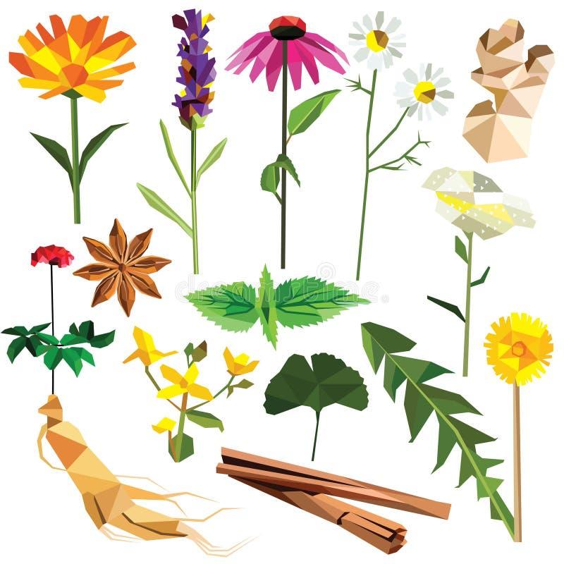 Ervas e especiarias ajustadas ilustração stock