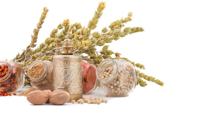 Ervas e especiarias no fundo branco Chá de montanha, paprika, caril, coentro e moinho para especiarias fotografia de stock