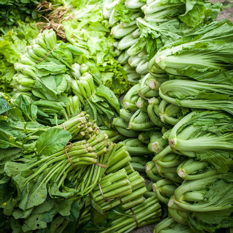 Ervas e especiarias orgânicas frescas foto de stock