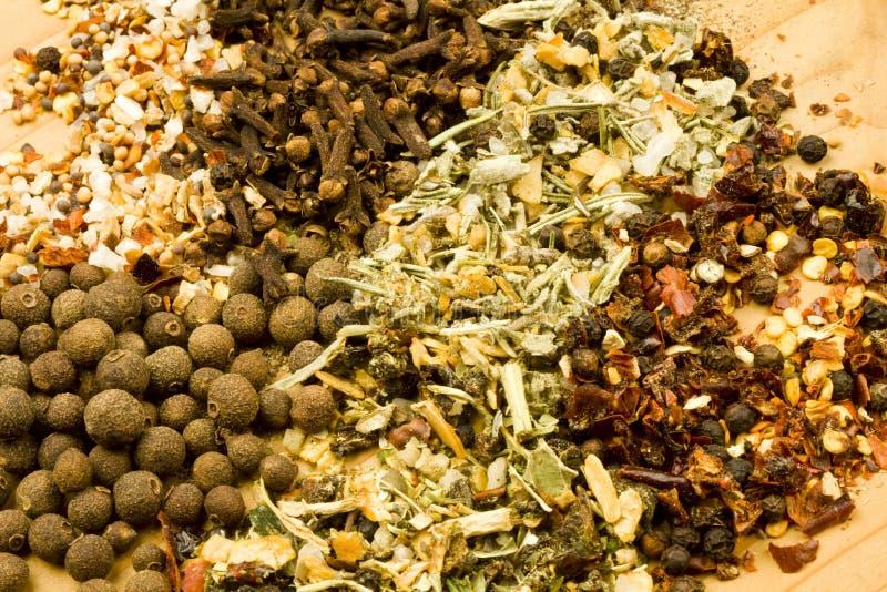 Ervas e especiarias secadas Assorted fotos de stock royalty free