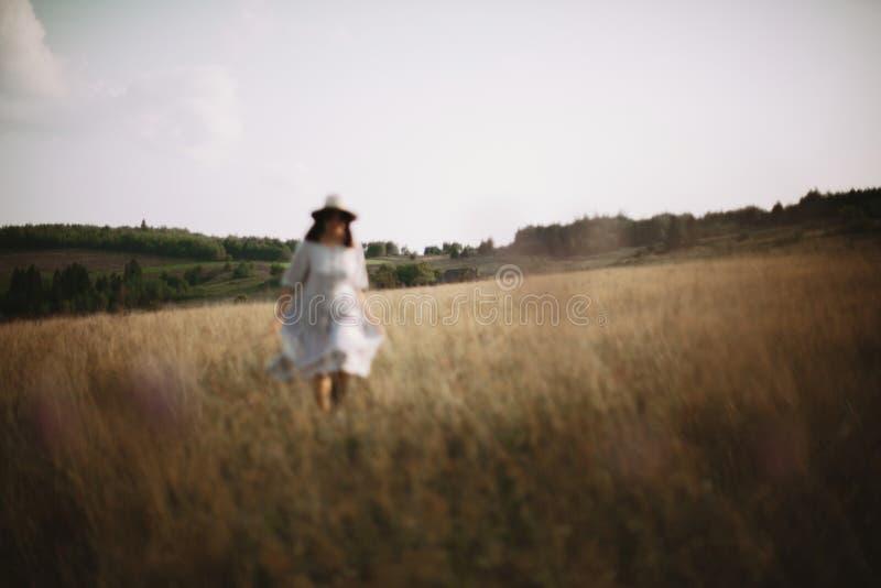 Ervas e wildflowers no prado ensolarado nas montanhas e na imagem borrada da menina no passeio de linho do vestido Mulher de Boho imagem de stock