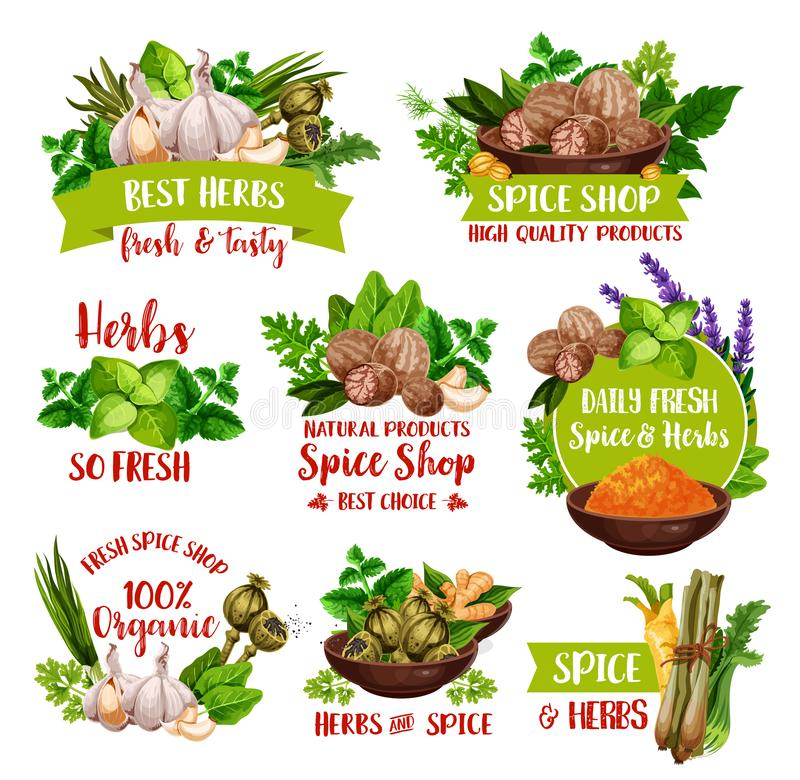 Ervas, especiarias naturais e temperos do mercado da exploração agrícola ilustração do vetor