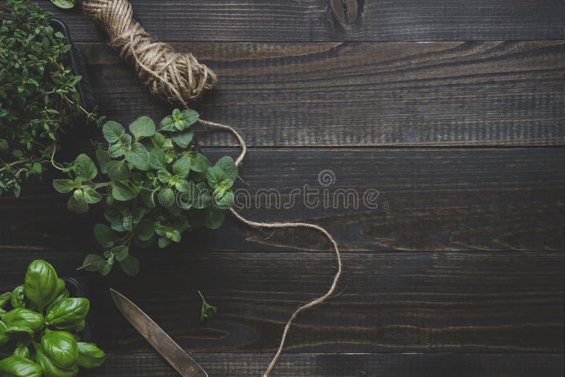 Ervas frescas na tabela de madeira escura, vista superior Fundo rústico com espaço da cópia fotografia de stock