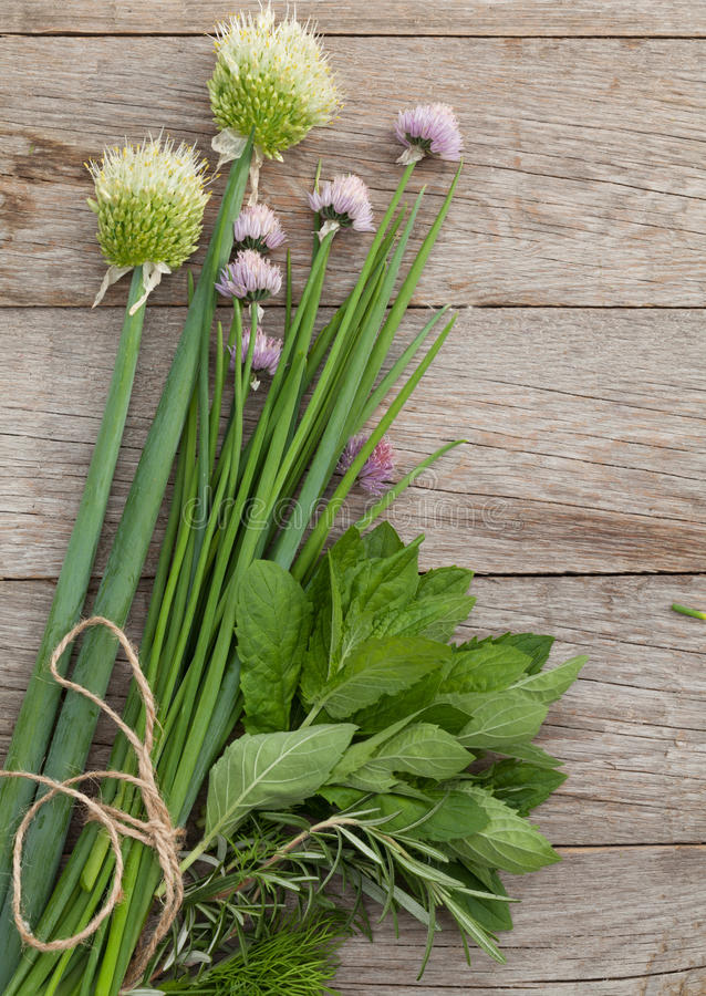 Ervas frescas na tabela do jardim imagens de stock