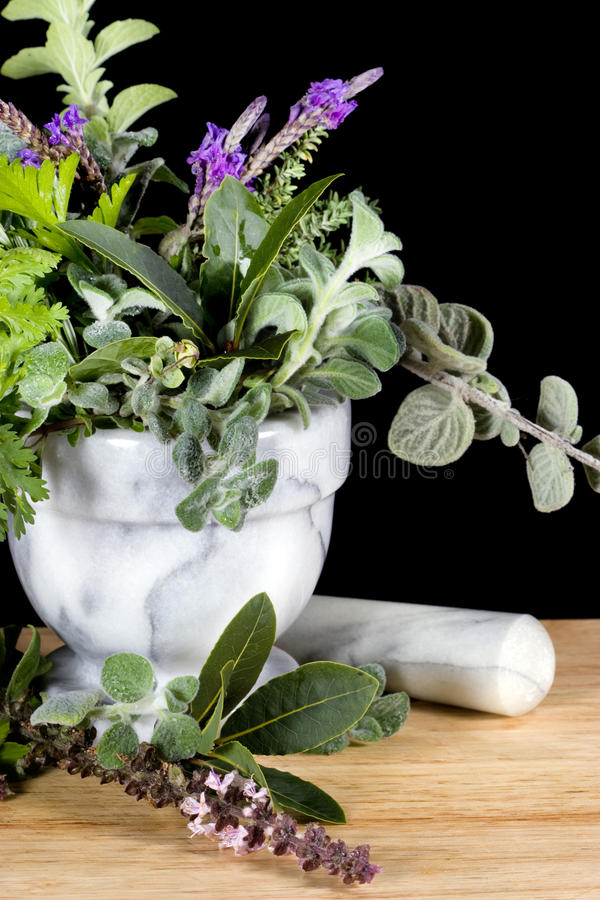 Ervas frescas no almofariz de mármore foto de stock
