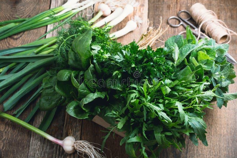 Ervas frescas orgânicas na caixa de madeira fotos de stock