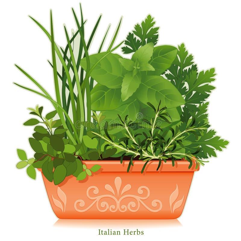 Download Ervas Italianas De +EPS No Terra - Plantador Do Cotta Ilustração do Vetor - Ilustração de jardinar, garlic: 10066905