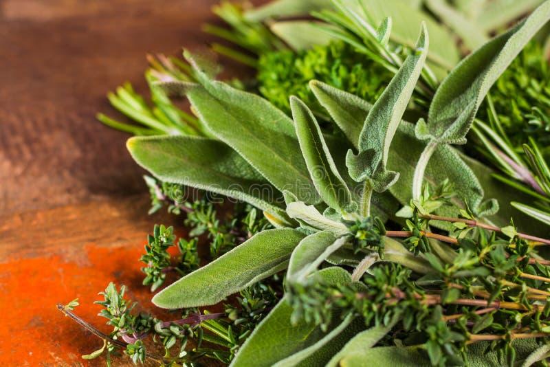 Ervas italianas frescas da cozinha - tomilho, alecrim, sábio, salsa fotos de stock